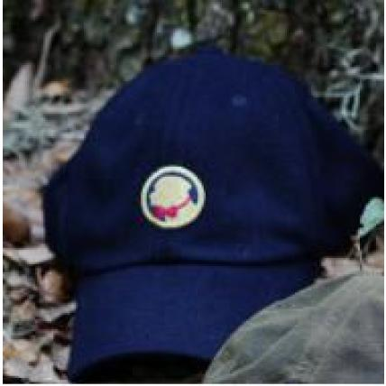 Frat Hat Navy Wool